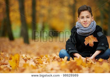 boy sitting on yellow leaves in the park