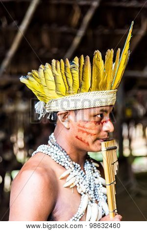 AMAZON, BRAZIL - CIRCA MARCH 2014: Indian tribe ritual in Amazon, Brazil
