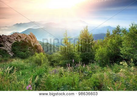Summer landscape in mountains.
