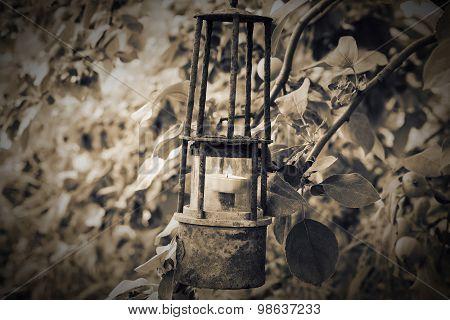 Ancient Lantern In The Garden