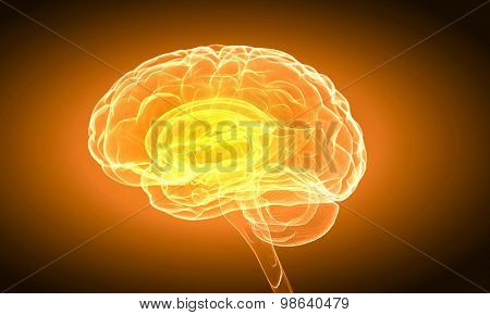 Science image with human brain on yellow background