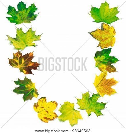 Letter U Composed Of Multicolor Maple Leafs
