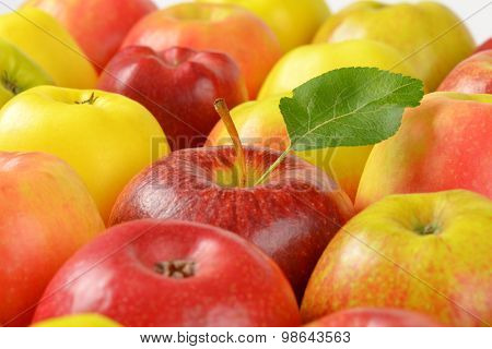 detail of red and yellow apples side by side