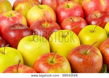 close up of red and yellow apples side by side
