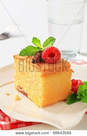 a piece of homemade sponge cake on white plate