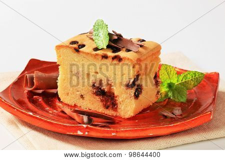 piece of chocolate chip sponge cake