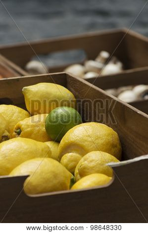 Lime, Lemons And Mushrooms Packed In Crates Stand Outdoors