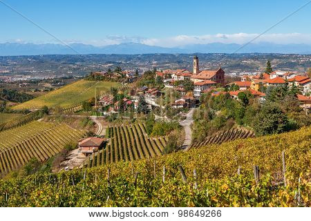 Autumnal vineyards and small town of Treiso on background in Piedmont, Northern Italy.