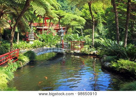 Lovely pond with goldfish.  In the depths of the park is visible Chinese gazebo.  Across the pond spanned by graceful bridge