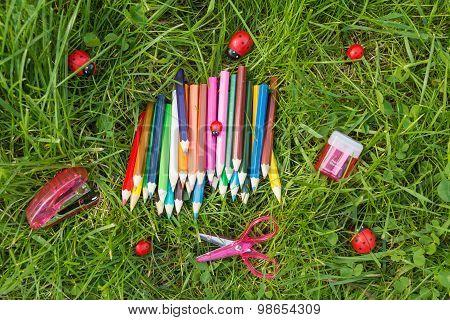 Stationary on grass