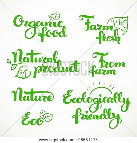 Fresh Food And Ecologically Friendly Green Calligraphic Inscription On A White Background