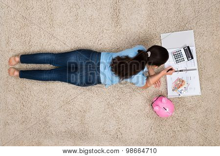Woman Doing Calculation At Home