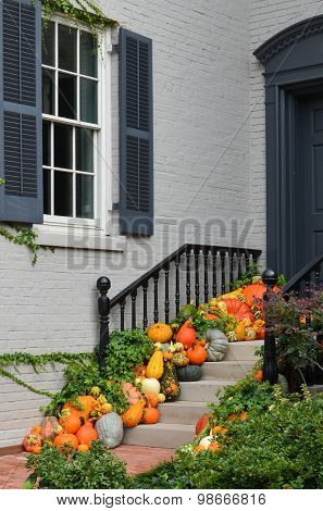 Pumpkins in front door to celebrate Thanksgiving and Halloween