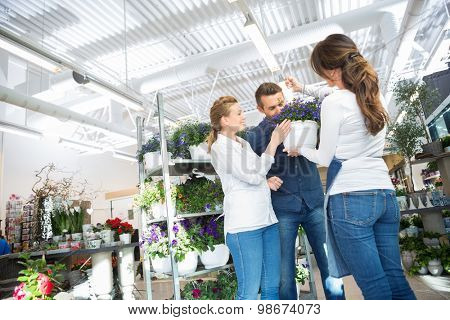Female florist guiding couple in buying purple flower plant at store
