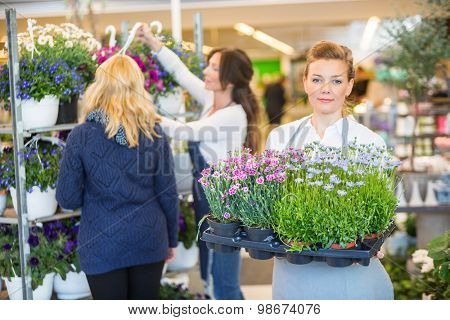 Portrait of female florist carrying flower plants with colleague assisting customer in background at shop