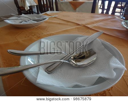 Plate, fork, spoon, knife on the table