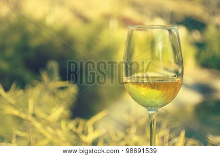 Glass Of Wine, Landscape Background