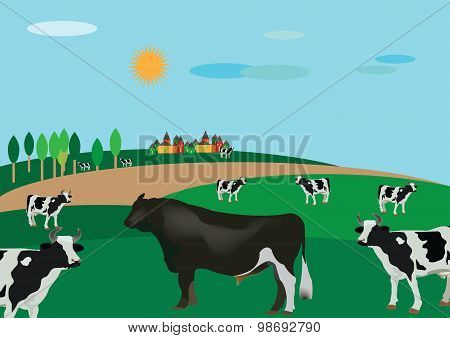 country landscape with cattle