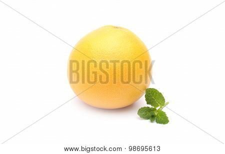 Grapefruits On White Background