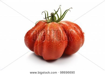 Beefsteak Tomatoes With Drops