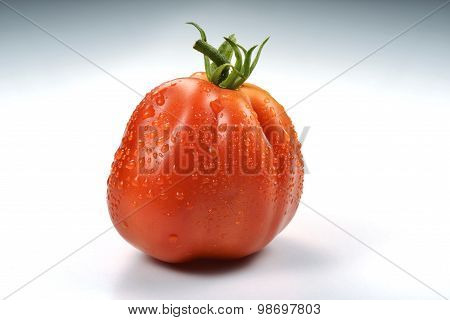 Beefsteak Tomato With Drops