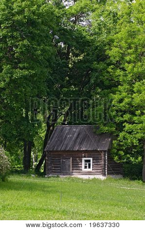 Little house with trees arow