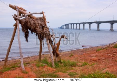 Driftwood Moose At Confederation Bridge