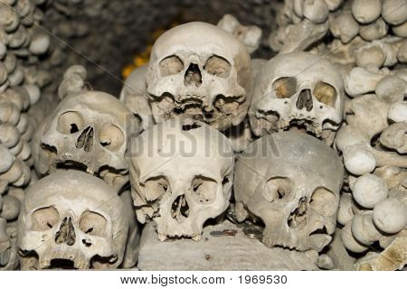 Six Human Skulls