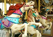picture of carnival ride  - Carousel horse ride - JPG