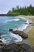 stock photo of pacific rim  - Rocky shore of Pacific Rim National park Canada - JPG