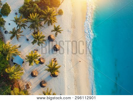 poster of Aerial View Of Palms On The Sandy Beach Of Indian Ocean At Sunset