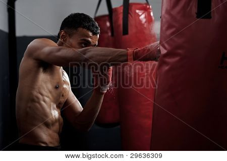 action of a boxing martial arts fighter training on a punching bag in the gym