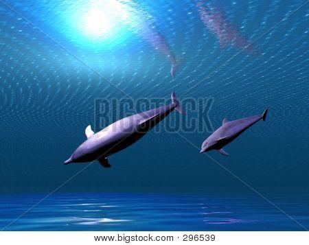 Delfines submarinos