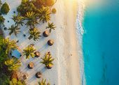 Aerial View Of Palms On The Sandy Beach Of Indian Ocean At Sunset poster