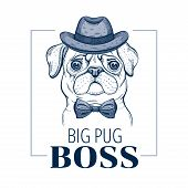 Pug Boss Dog. T-shirt Print Design. Cool Animal Vector In Doodle Hand Drawn Style For Tee, Child, Ma poster