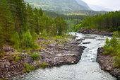 Mountain River With A Waterfall In Norway. Landscape Of Norway. Summer Landscape In The Mountains Of poster