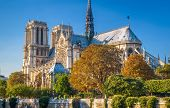 Notre Dame De Paris In Summer, France. It Is One Of The Top Landmarks Of Paris. Scenic View Of The N poster