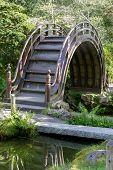 The Arched Drum Bridge In The Japanese Tea Garden. Golden Gate Park, San Francisco, California, Usa. poster