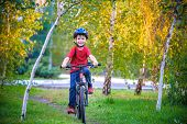 Happy Kid Boy Of 6 Years Having Fun In Autumn Forest With A Bicycle On Beautiful Fall Day. Active Ch poster