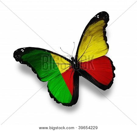 Benin Flag Butterfly, Isolated On White