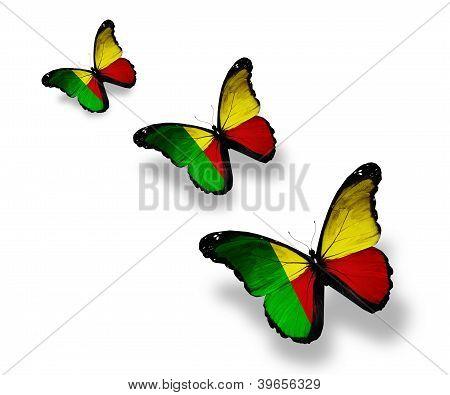 Three Benin Flag Butterflies, Isolated On White