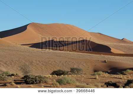 Sand Dunes Of Soussus Vlei