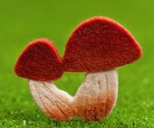 picture of shroom  - Artificial small mushrooms on artificial green grass - JPG