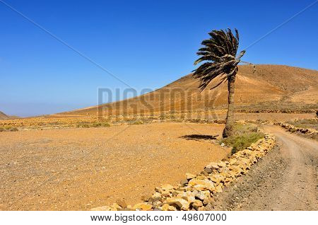 view of Tindaya Mountain in La Oliva, Fuerteventura, Canary Islands, Spain