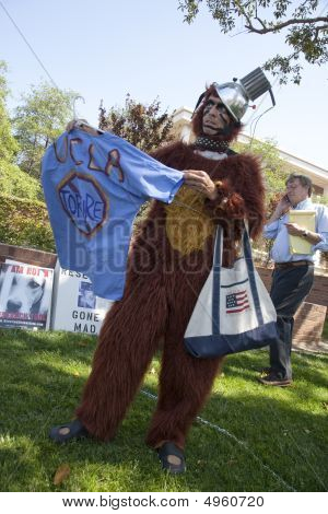 Ucla Animal Rights Activists