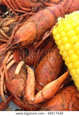Crawfish dinner