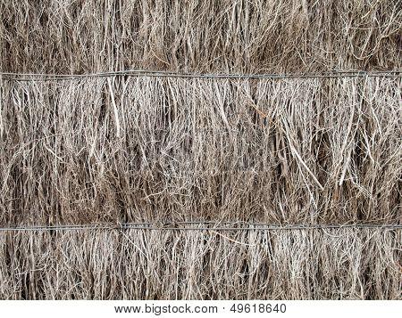 Detail Of Brushwood  Fence