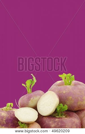 freshly harvested spring turnip (Brassica rapa) and a cut one on a purple background