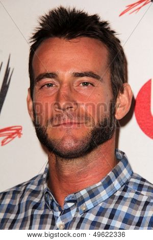 LOS ANGELES - AUG 15:  CM Punk at the Superstars for Hope honoring Make-A-Wish at the Beverly Hills Hotel on August 15, 2013 in Beverly Hills, CA