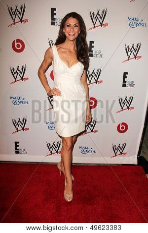 LOS ANGELES - AUG 15:  Samantha Harris at the Superstars for Hope honoring Make-A-Wish at the Beverly Hills Hotel on August 15, 2013 in Beverly Hills, CA
